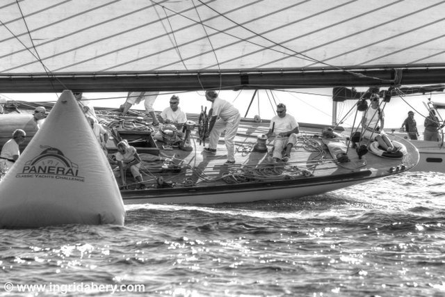 Regattas Royale. Photos by Ingrid Abery.